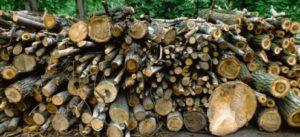 薪ストーブ 薪 木