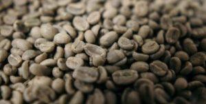 コーヒー 焙煎 自宅 生豆a