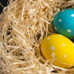 米国ETF 配当 ブログ 3卵
